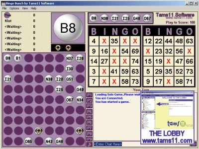 Click to view Tams11 Bingo Bunch 1.0.1.0 screenshot