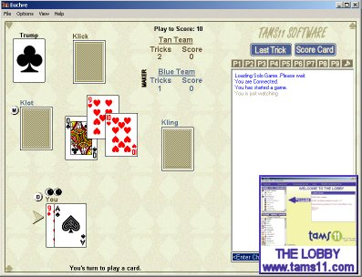 Tams11 Euchre screen shot